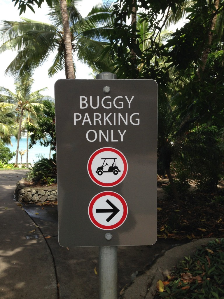 Buggy Sign