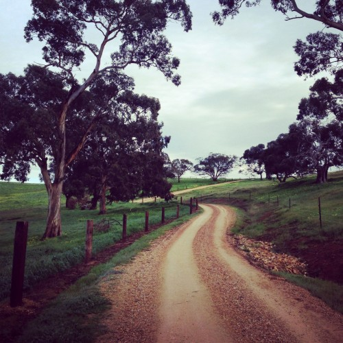 Kate Ritchie - Barossa Valley (30)