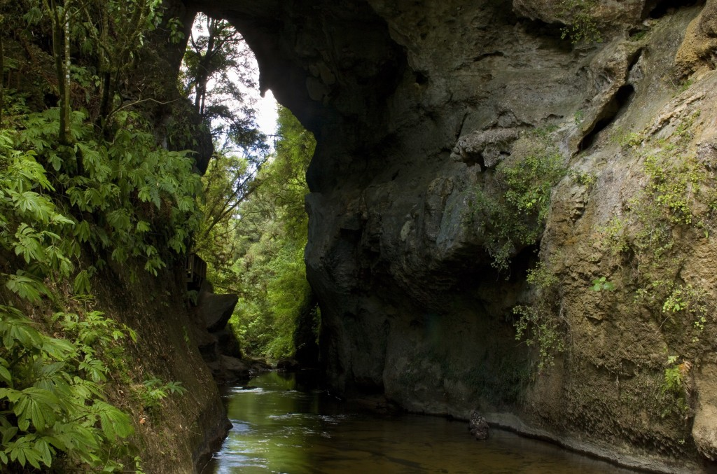 Waitomo Caves: Gateway to another world