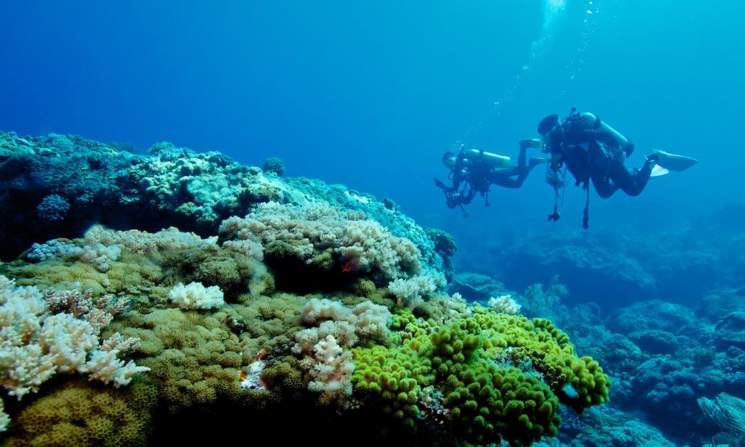 Great Barrier Reef | lastminute.com.au