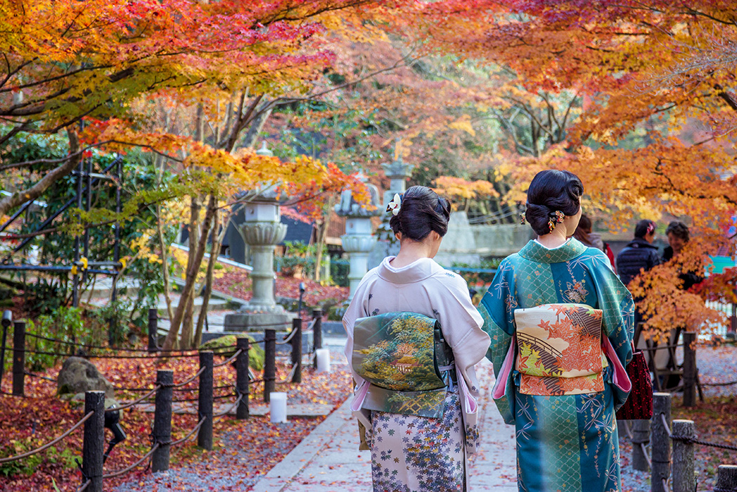 Kimino | Japan | lastminute.com.au