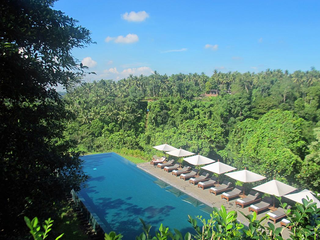 Infinity Pool Alila Ubud