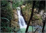 El Yunque Rainforest - A Nature Lover's Paradise