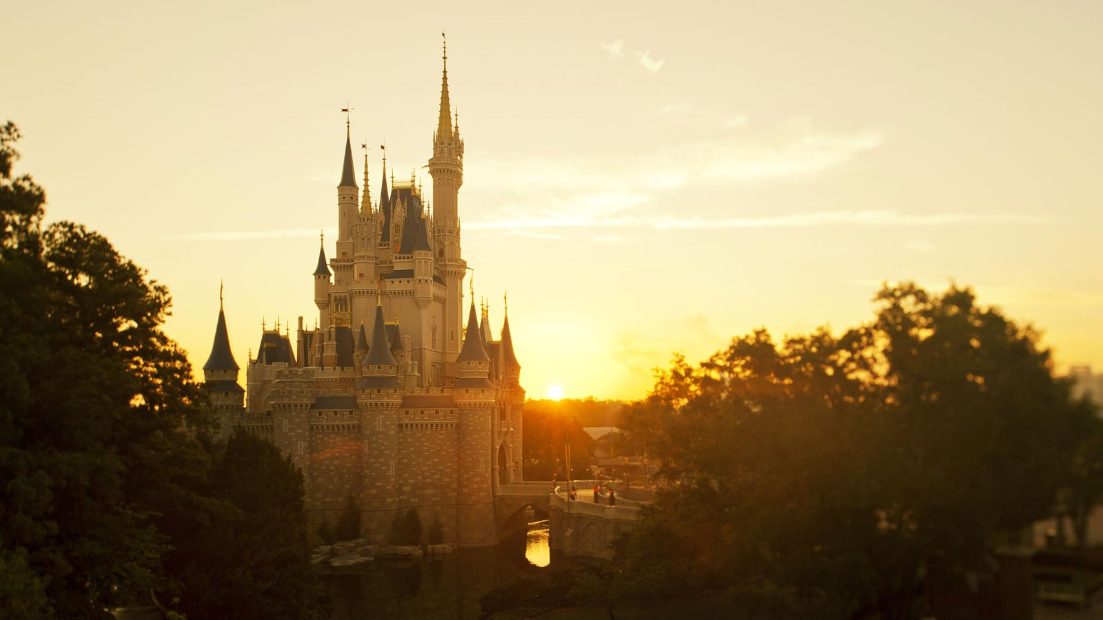 Disney Vacations Find The Perfect Disney Package For Your