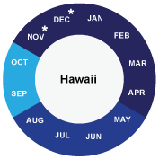 Hawaii cruise info