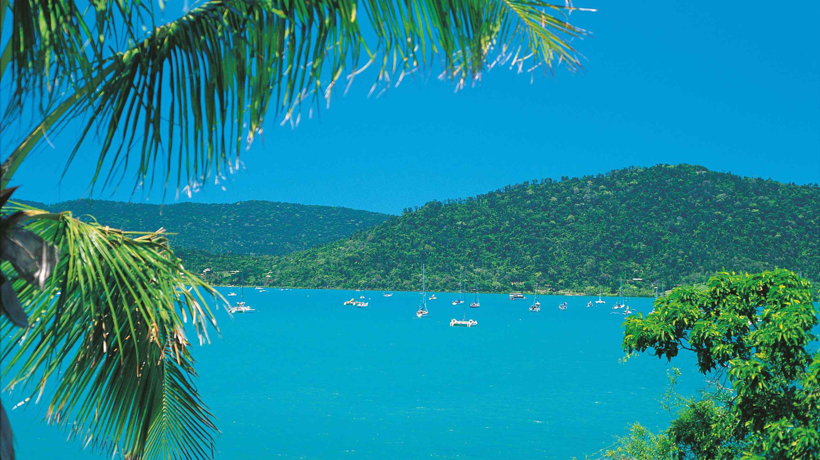 Last Minute Hotel Deals Airlie Beach