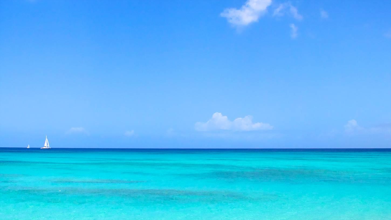 Cheap Flights To Barbados Barbados 235 63 In 2017 Expedia