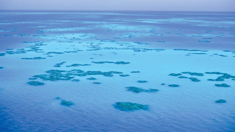 Cheap Flights To Bermuda Bermuda 306 81 In 2017 Expedia