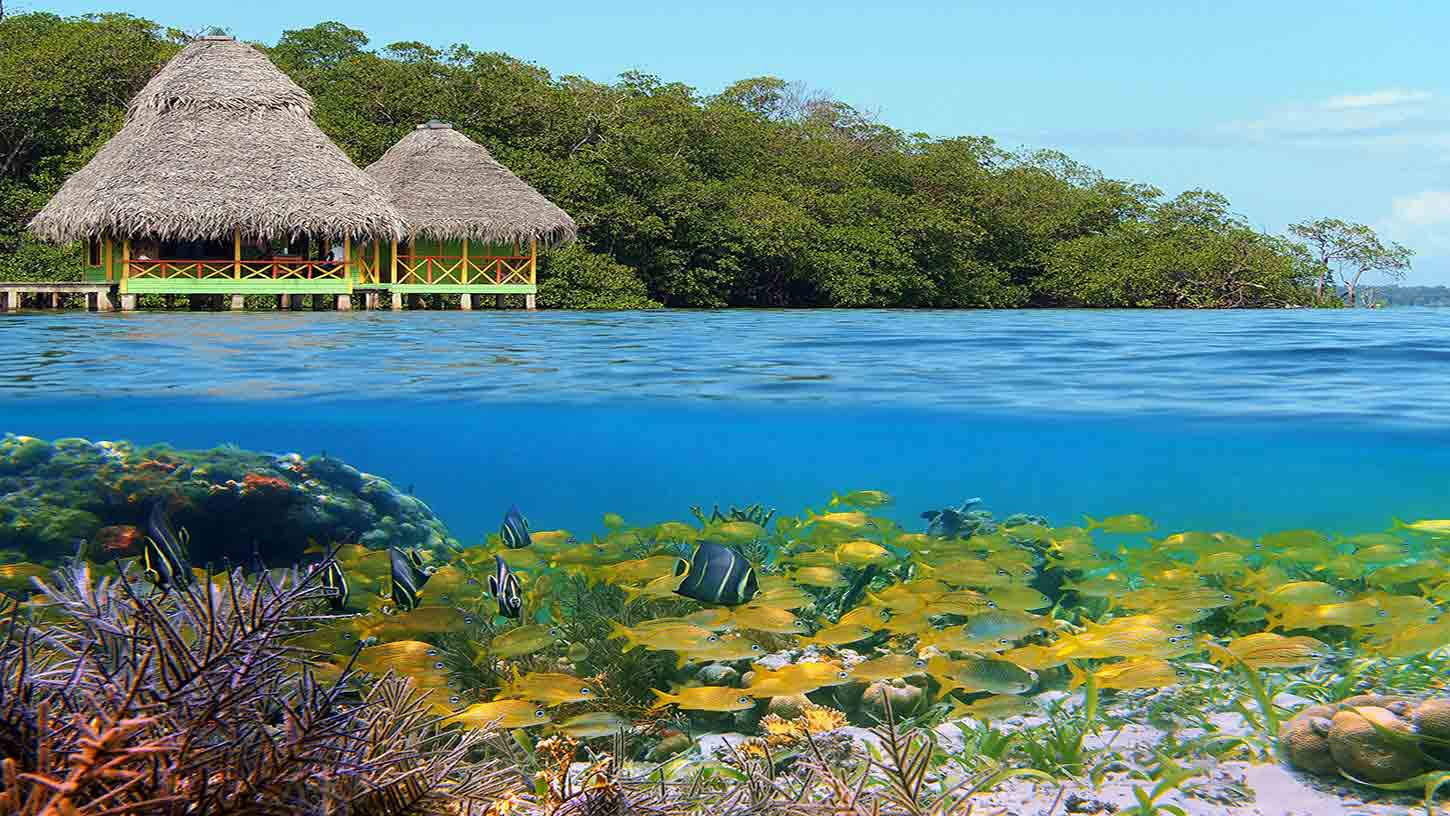 Red Frog Beach Island Resort Certified For Its: Cheap Flights To Bocas Del Toro, Panama $224.41 In 2017