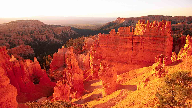 Hotels Near Bryce Canyon National Park Ut