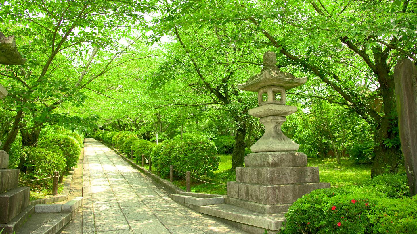 Cheap Flights To Kyoto Japan 324 90 In 2017 Expedia