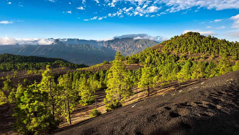 Cheap Flights To La Palma Spain 438 50 In 2017 Expedia