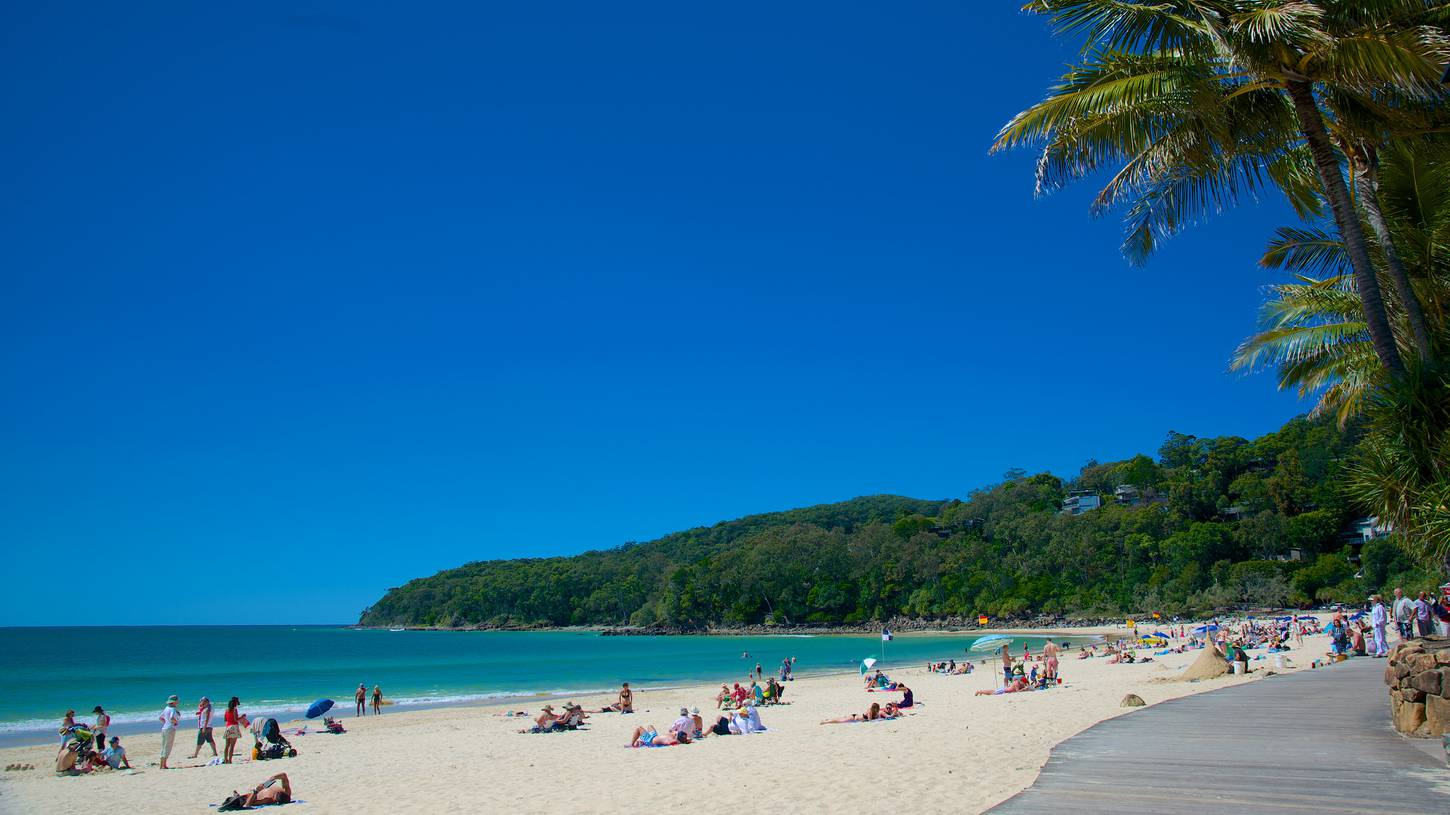 Noosa Travel Guide