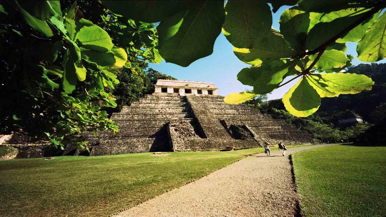 Vuelos Baratos A Palenque Mxn 2 331 99 161 Compra Ahora