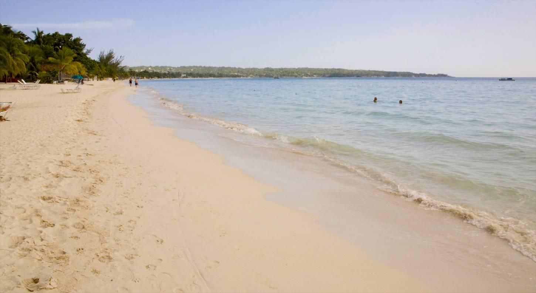 Beach nude hairy-6141