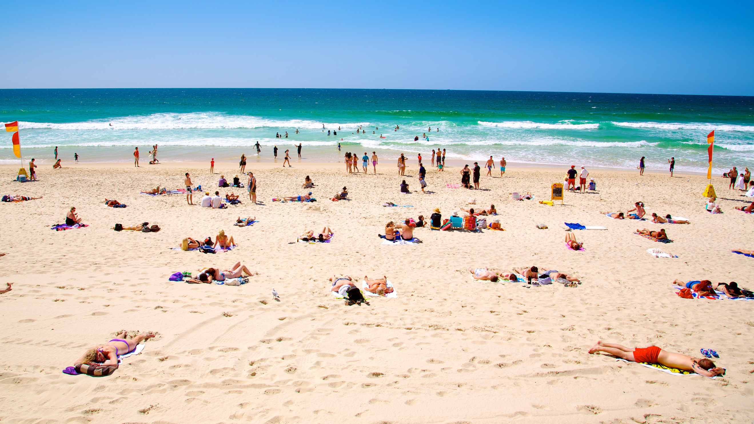 Top 10 Things To Do In Surfers Paradise from AU$18 - Activities