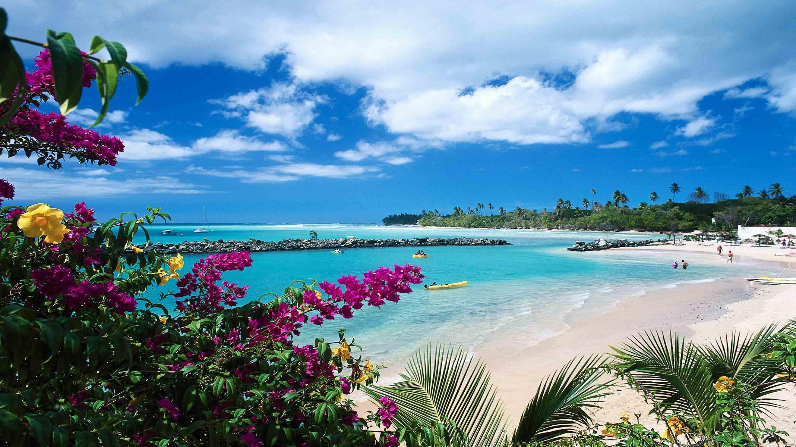 Best Travel Booking Site Rewards