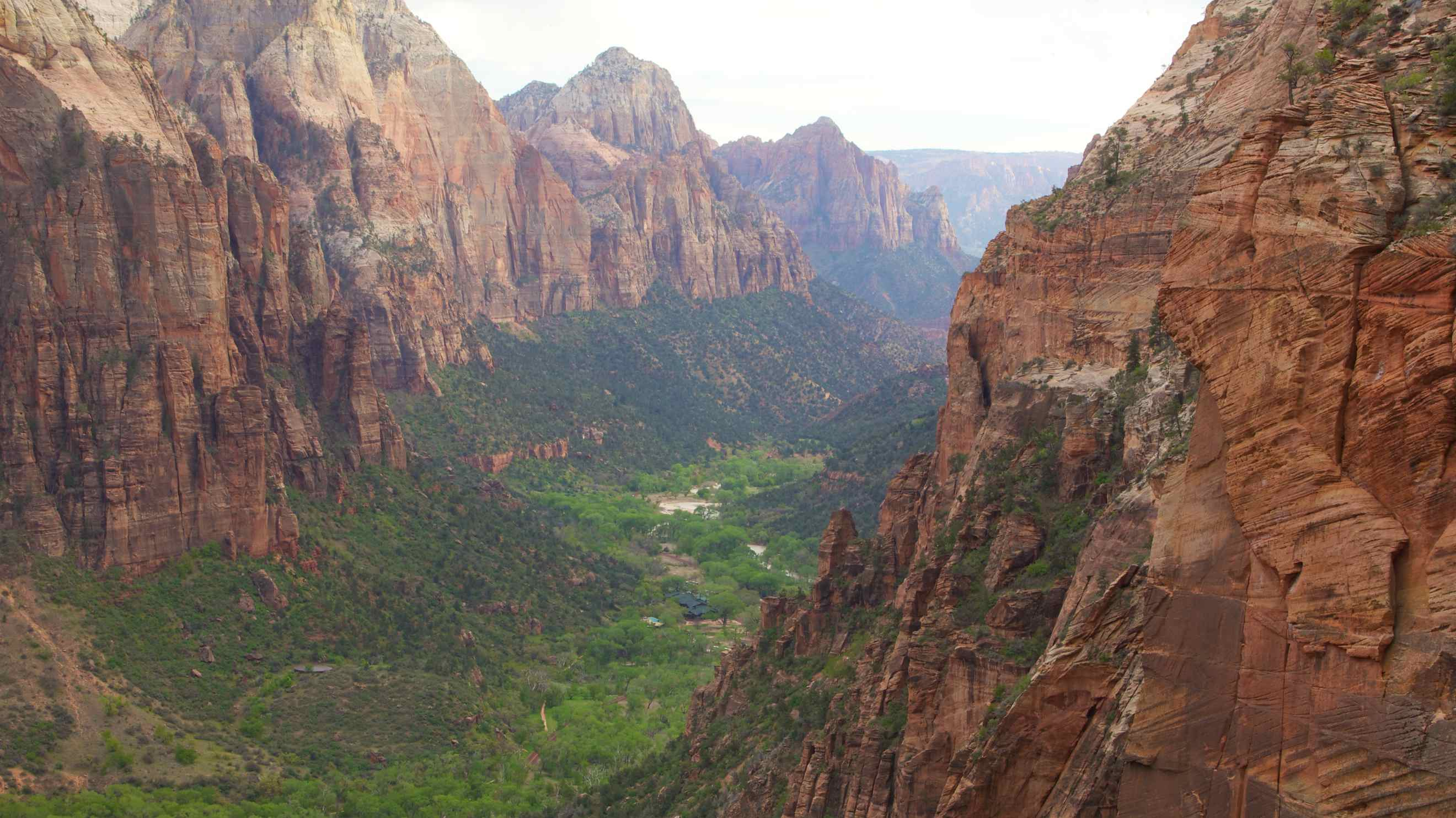 the 10 best hotels in zion national park, utah for 2019 | expedia