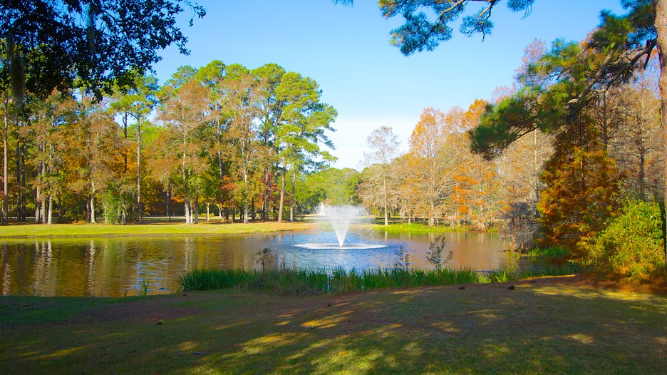 Brookgreen Gardens   Murrells Inlet   Tourism Media ...
