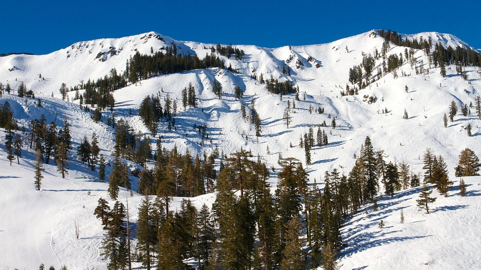 Alpine Meadows en Lake Tahoe, Estados Unidos | Expedia.com