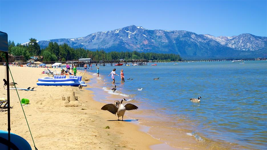 Lake Tahoe Travel Book