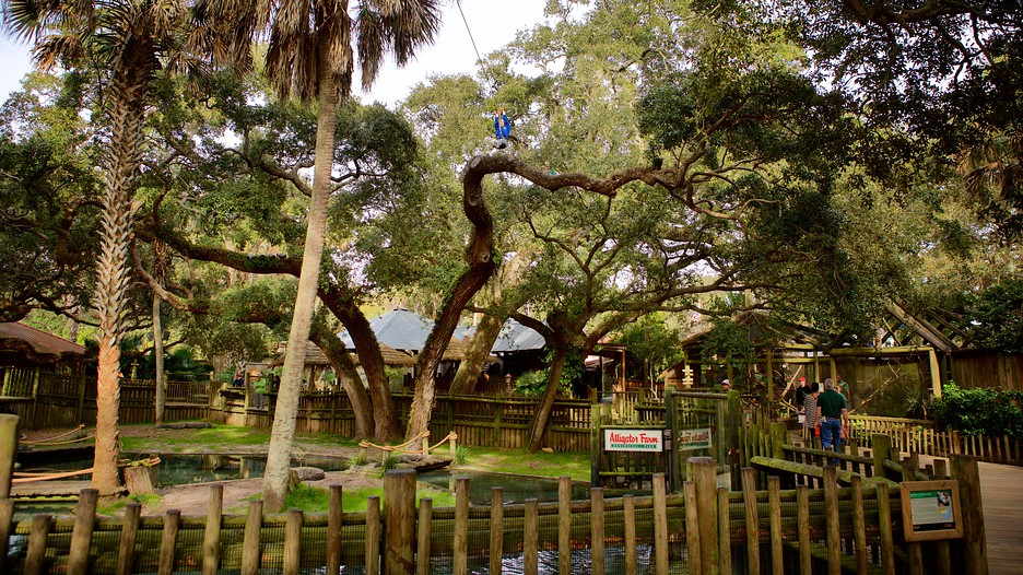 an analysis of st augustine as a tourism destination in north america Located on florida's east coast about 33 miles south of jacksonville, st augustine is the nation's oldest city visitors cannot fail but succumb to its undeniable charm and cobblestone lanes lined by buildings, some of which are 18c acquired by a variety of groups or individuals, many of.
