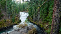 Deschutes National Forest - Bend
