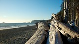 Rialto Beach - Washington - Tourism Media