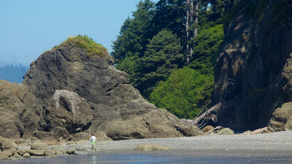 Ruby Beach in Olympic National Park, Washington   Expedia.ca