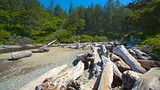 Ruby Beach - Washington - Tourism Media
