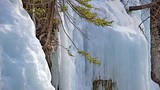 Maligne Canyon - Alberta - Tourism Media