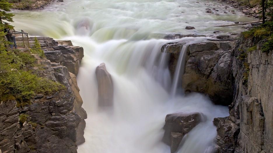 Sunwapta Falls in Jasper, Alberta   Expedia.ca