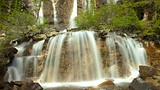 Tangle Falls - Jasper National Park - Tourism Media