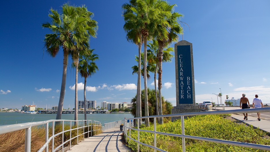 Tampa Bay Vacations 2017 Explore Cheap Vacation Packages Expedia