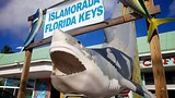 Islamorada - Florida - Tourism Media