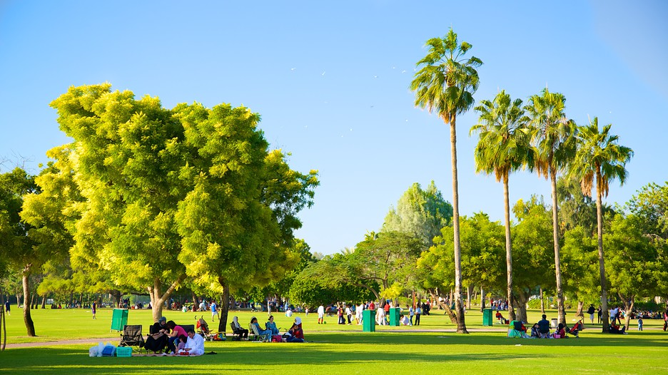 Top 10 Parks in Dubai
