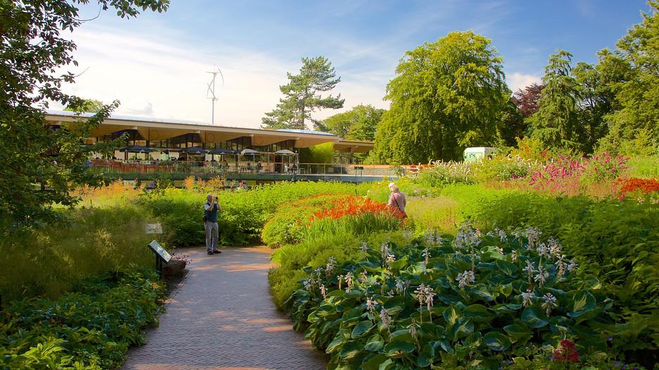 Royal botanic garden in edinburgh scotland expedia for Royal botanic garden edinburgh