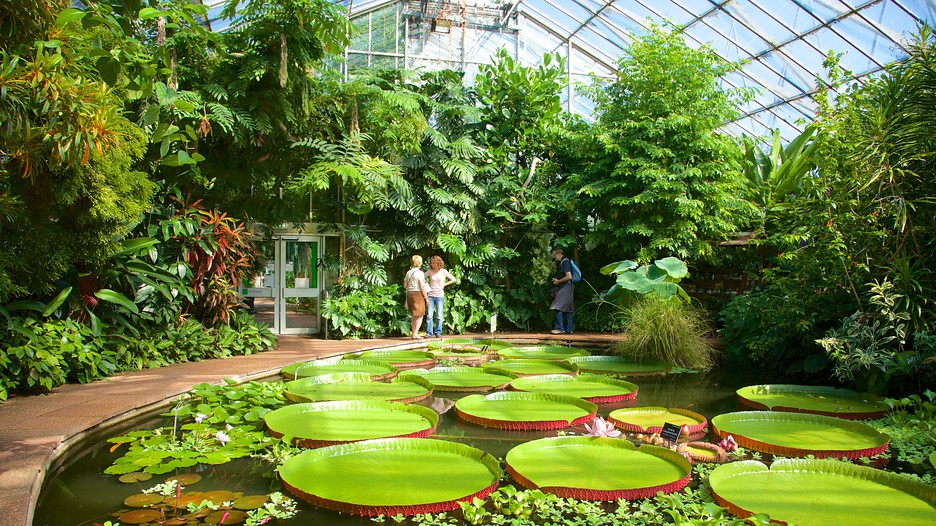 Royal Botanic Garden In Edinburgh Scotland Expedia