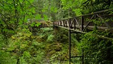 Englishman River Falls Provincial Park - British Columbia - Tourism Media