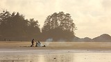 Chesterman Beach - Vancouver Island - Tourism Media