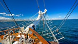 Lady Nelson Ship - Tasmania - Tourism Media