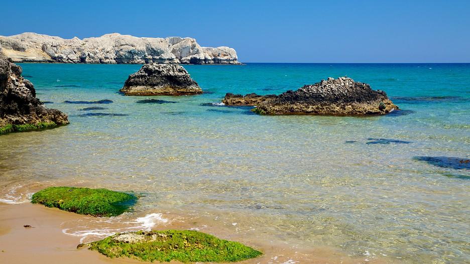 A Beach Rentals