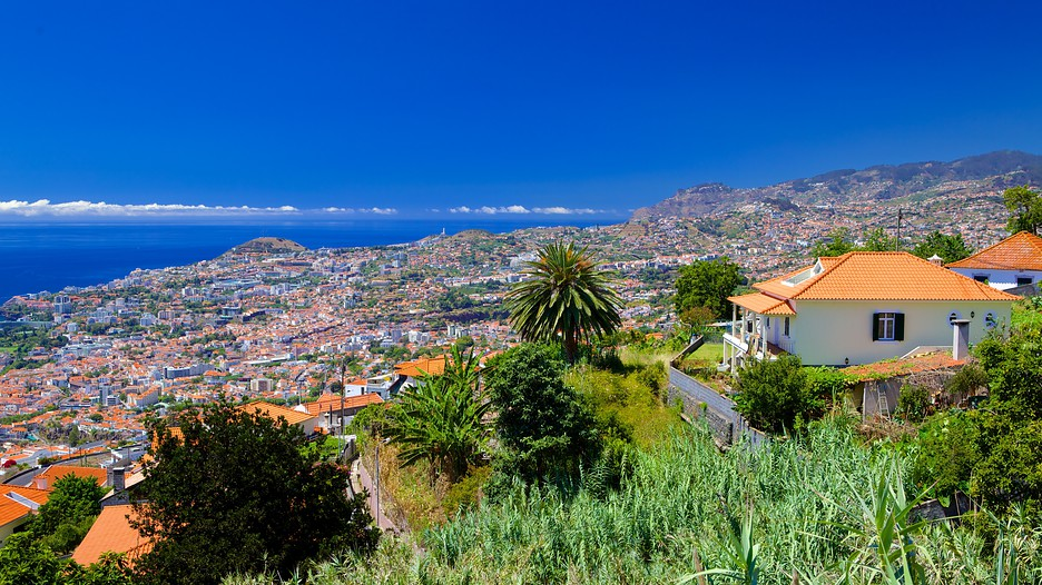 Madeira Island Portugal Pictures And Videos And News Citiestips Com
