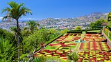 Botanical Garden - Madeira Island - Tourism Media