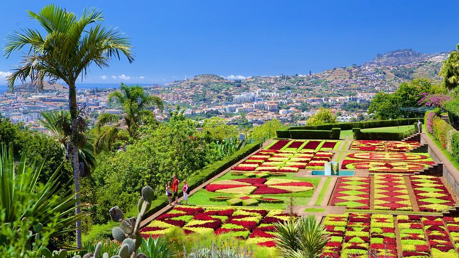 Funchal vacations 2017 package save up to 603 expedia for Cementerio jardin de alcala de henares