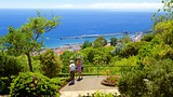 Botanical Garden - Funchal - Tourism Media