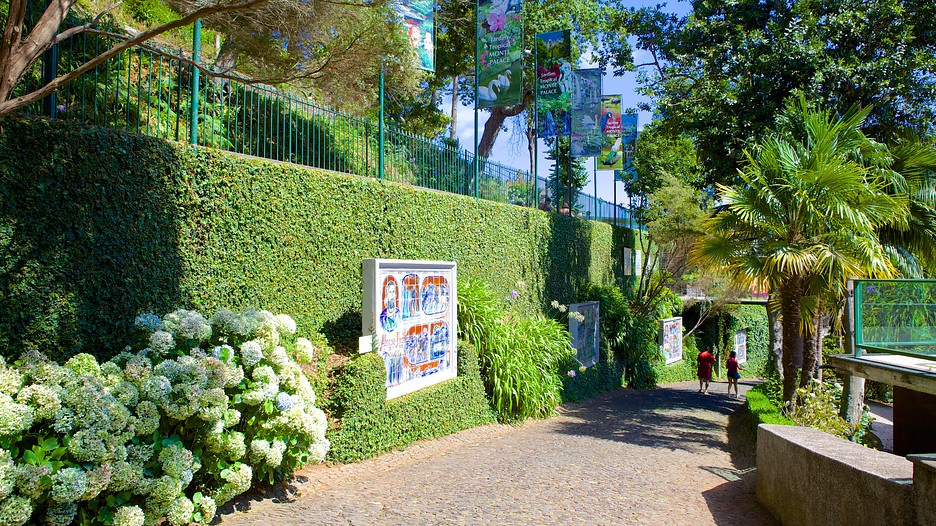 Monte Palace Gardens In Funchal Expedia