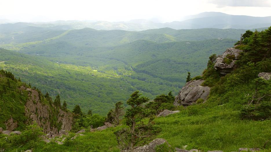 Mountain Home Rentals Boone Nc