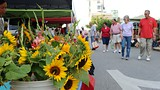 The Fayetteville Farmers Market - Fayetteville - Arkansas Parks and Tourism