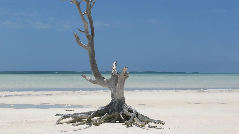 Bahamas Vacation Packages: Find Cheap Vacations To Bahamas